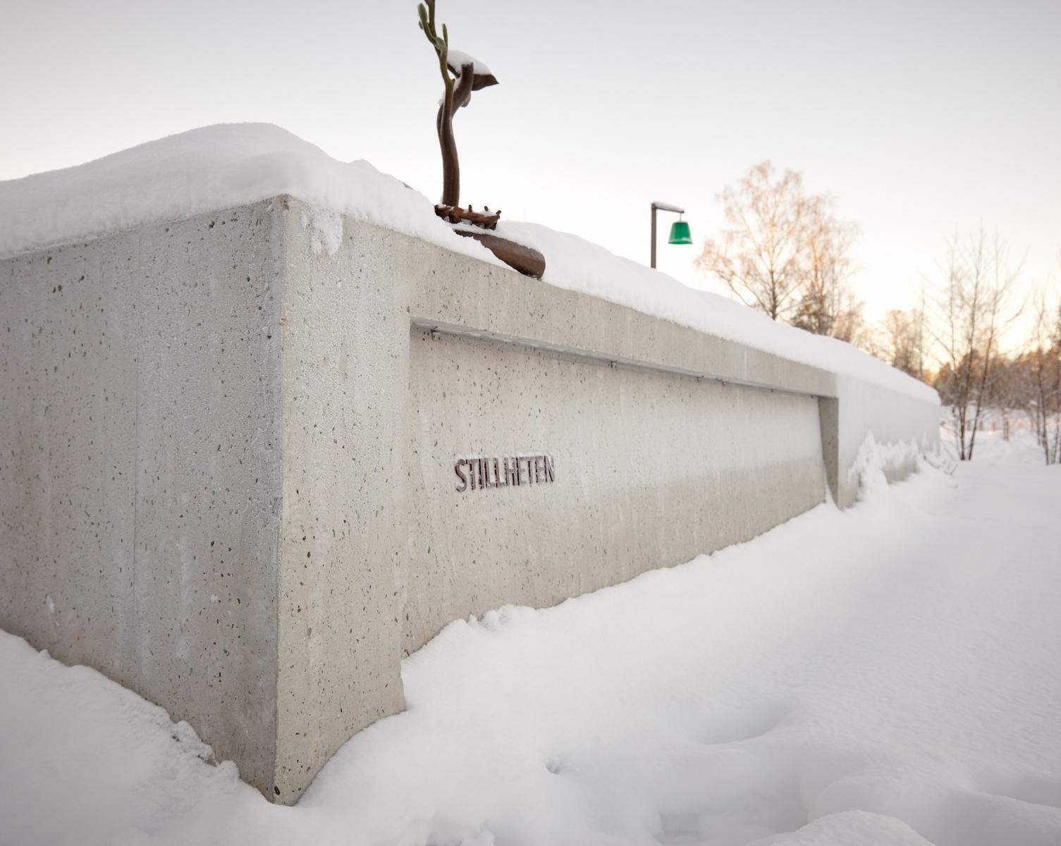 100_taby-forsamling-vinter